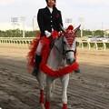 写真: 川崎競馬の誘導馬05月開催 カーネーションVer-120514-02-large