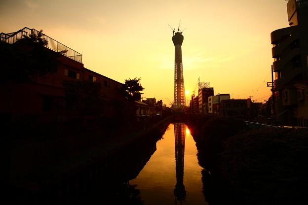 Photos: 『栄光の架け橋』