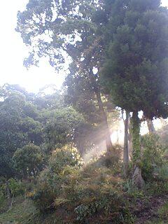 おはようございます!!山江...