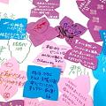 Fukushima_20110508_4