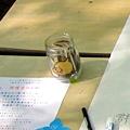 Fukushima_20110508_18