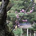 ☆神社・仏閣