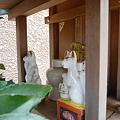 Photos: 稲荷社(台東区池之端) 7