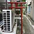 Photos: 稲荷社(台東区池之端) 2