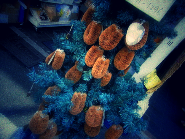 たわしのなる木