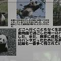 Photos: ueno090201001