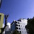 2011-01-27の空
