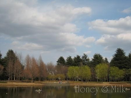 彩の森入間公園3 IMG_8531