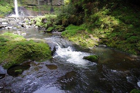五老ヶ滝付近の渓流