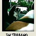 Photos: Terrano