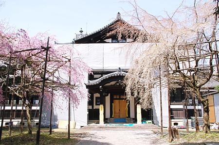 2010年04月04日_DSC_1285奈良国立博物館仏教美術資料研究センター