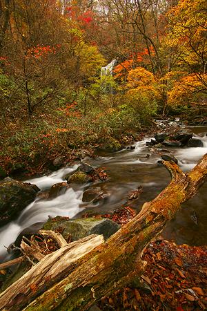 マックラ滝から続く流れ