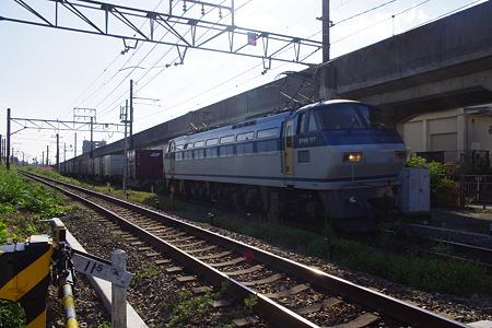 IMGP6247