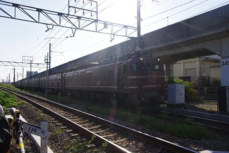 IMGP6259