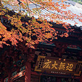 Photos: お寺と紅葉