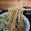 Photos: 麓郷舎 ネギ森 味噌 麺