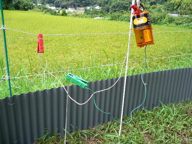 写真: イノシシよけの電柵(新)