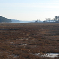 Photos: Thomas Point Salt Marsh