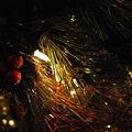 The Christmas Tree No.1