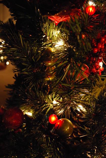 Photos: The Christmas Tree No.2