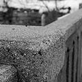 写真: The Bridge 1-30-11