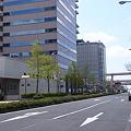 京町筋 新緑_04