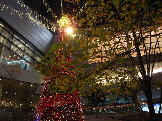 Christmastree003