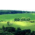 八月の高原