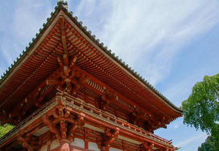 金剛寺の南門と空