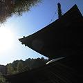 京都2007.常寂光寺3