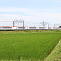 Photos: 253系0番台 Ne-??編成 成田エクスプレス