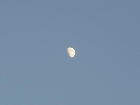 101116-お月さん (2)