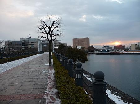 110215-汽車道(早朝) (6)