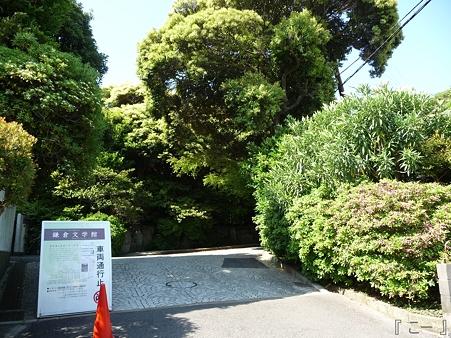 110519-鎌倉文学館