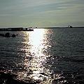 写真: 新潟なう。日本海キターーー!
