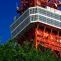 写真: 東京タワー大展望台