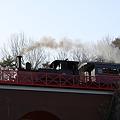 Photos: 蒸気機関車12号が行く~2
