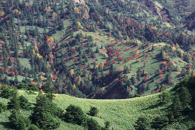 大パノラマの中心・山向うの紅葉