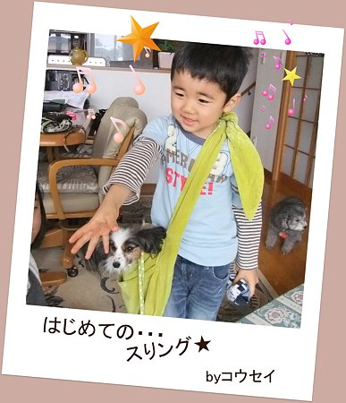 2011_02270159-1