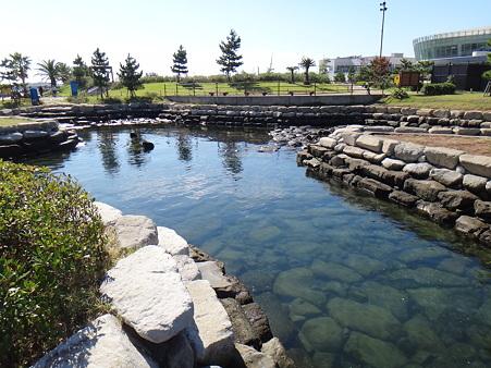 親水公園 (2)