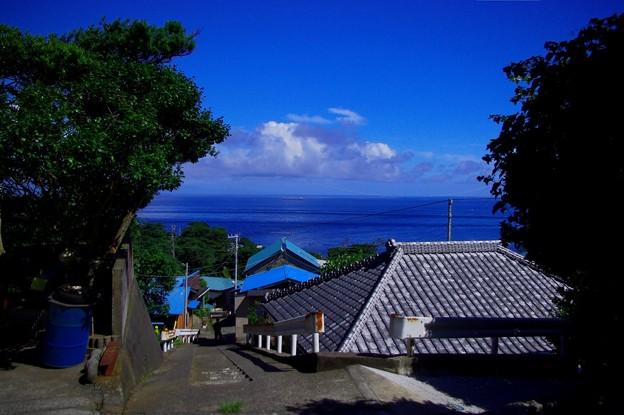 利島の集落