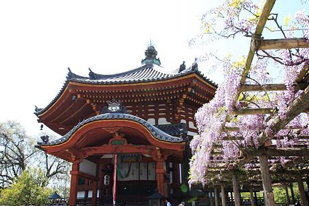 2010.04.28 興福寺 南円堂