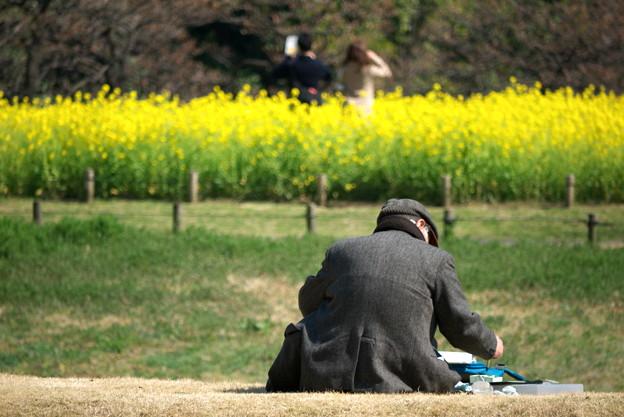2011.03.25 浜離宮 筆