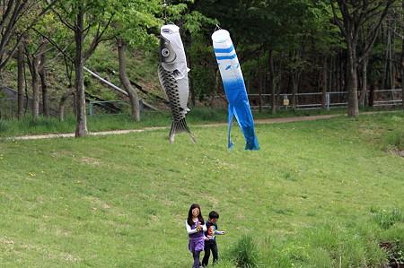 2011.05.03 和泉川 鯉幟