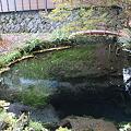 写真: 御釜池