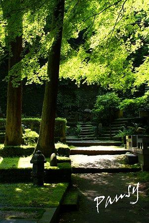 風待月の東慶寺にて・・4