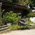 写真: 海岸の家・・
