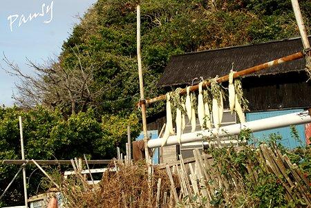大根を干す海辺の家・・