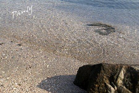 透きとおった海水・・