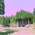 Photos: 大自然